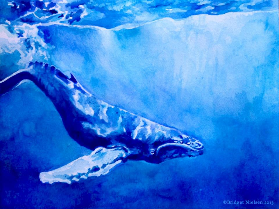 Whales - Oversouls of Dolphins - Cetacean Alien Race on Earth